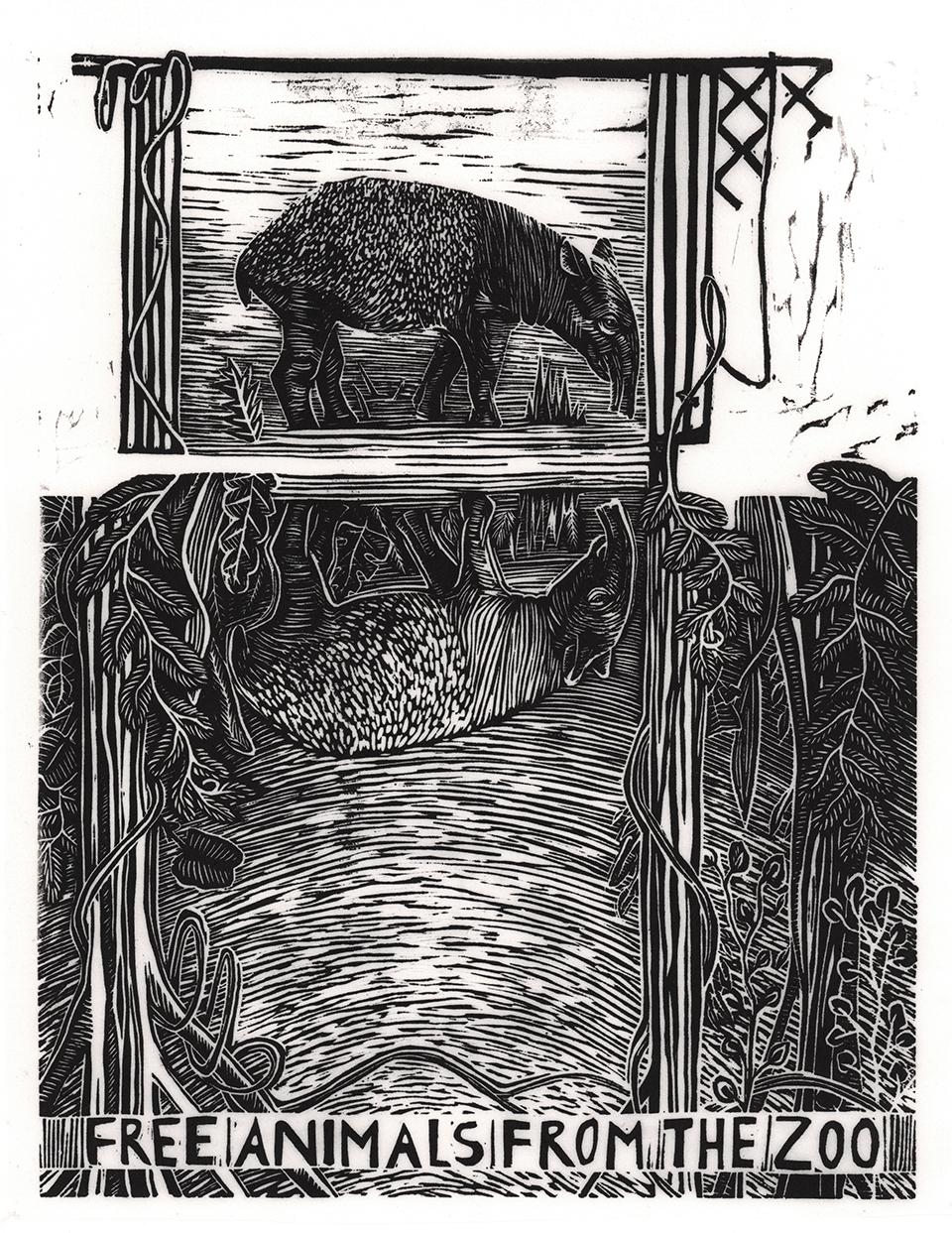 tapir_bw_01